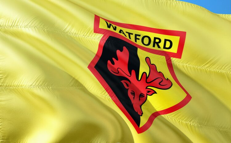 About Your Watford Udinese Web Story 2020